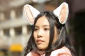 cat-ears
